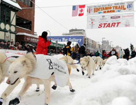 Iditarod Sled Dog Race Alaska